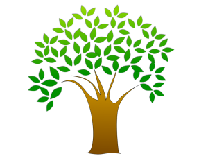 FREE TREE seedlings at Haddon Heights Municipal Building, Sat. April 23