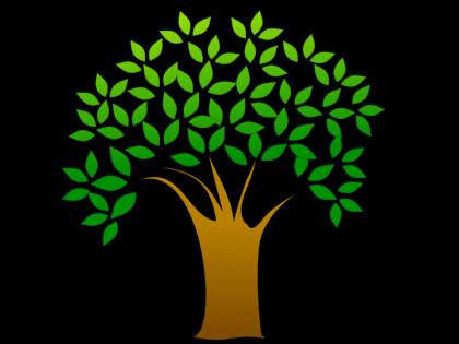 FREE TREE seedlings at Haddon Heights Municipal Building, Sat. April 23